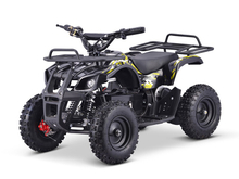 500W Electric ATV