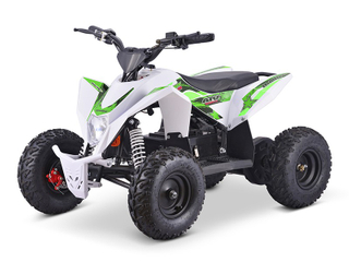 1000W Electric ATV